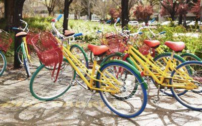 Google's geheim van teamwork